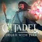 Citadel: Forged with Fire ゲーム