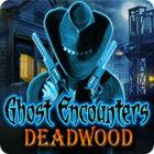 ゴースト エンカウンター:呪われた町デッドウッド ゲーム
