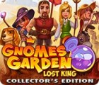 Gnomes Garden: Lost King Collector's Edition ゲーム