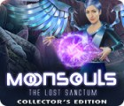 Moonsouls: The Lost Sanctum Collector's Edition ゲーム